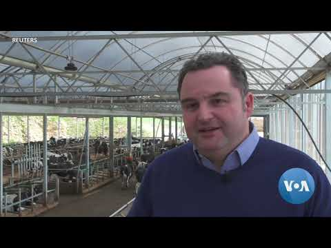 The Future of Farming: Robots Tend Crops and Bovines Go 5G