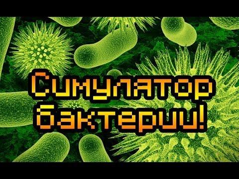 Играть В Игру Симулятор Бактерии