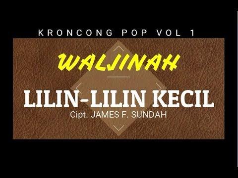 LILIN LILIN KECIL - Waljinah (Kroncong Pop Vol 1)