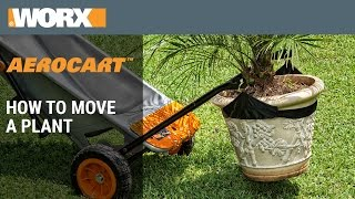 How To Move A Plant Using The Worx Aerocart