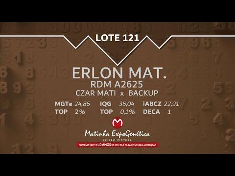LOTE 121 MATINHA EXPOGENÉTICA 2021