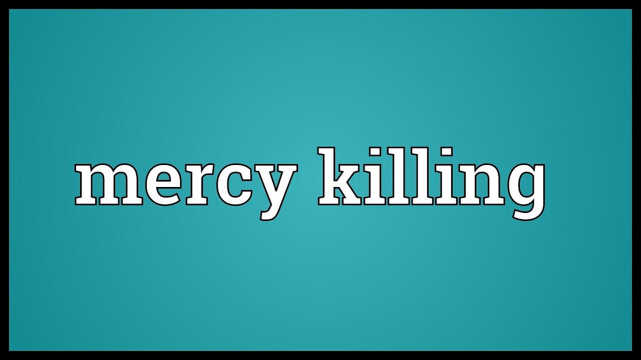 essay on mercy killing