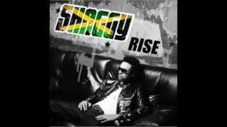 "SHAGGY - DIVA [ NEW ALBUM 2012 "" RISE "" ]"