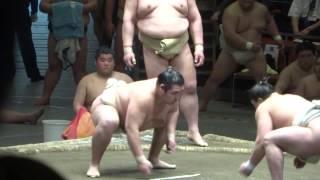 20140429 横審稽古総見 横綱鶴竜、日馬富士好調 稀勢の里イマイチ.