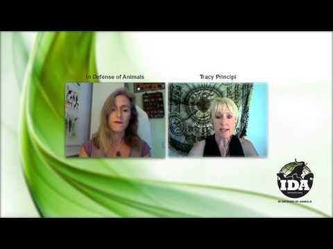 Vegan Spirituality Online Gathering with Tracy Lynne