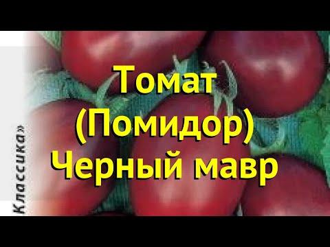 Томат обыкновенный. Краткий обзор, описание характеристик, где купить семена Черный мавр