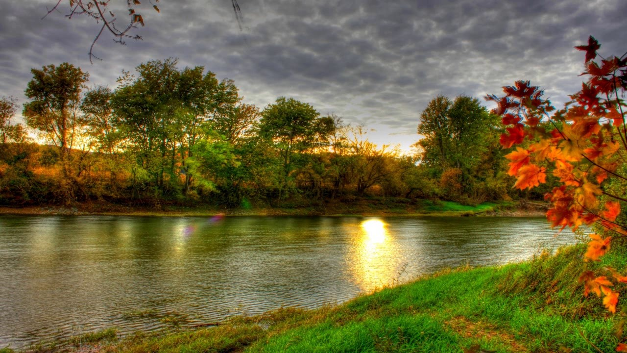 Adult Swim Bump Autumn River Youtube