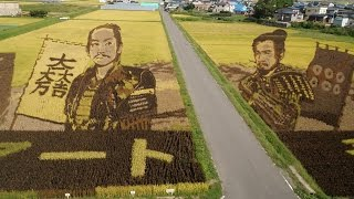 Japanese Farmers Incredible Rice Field Art