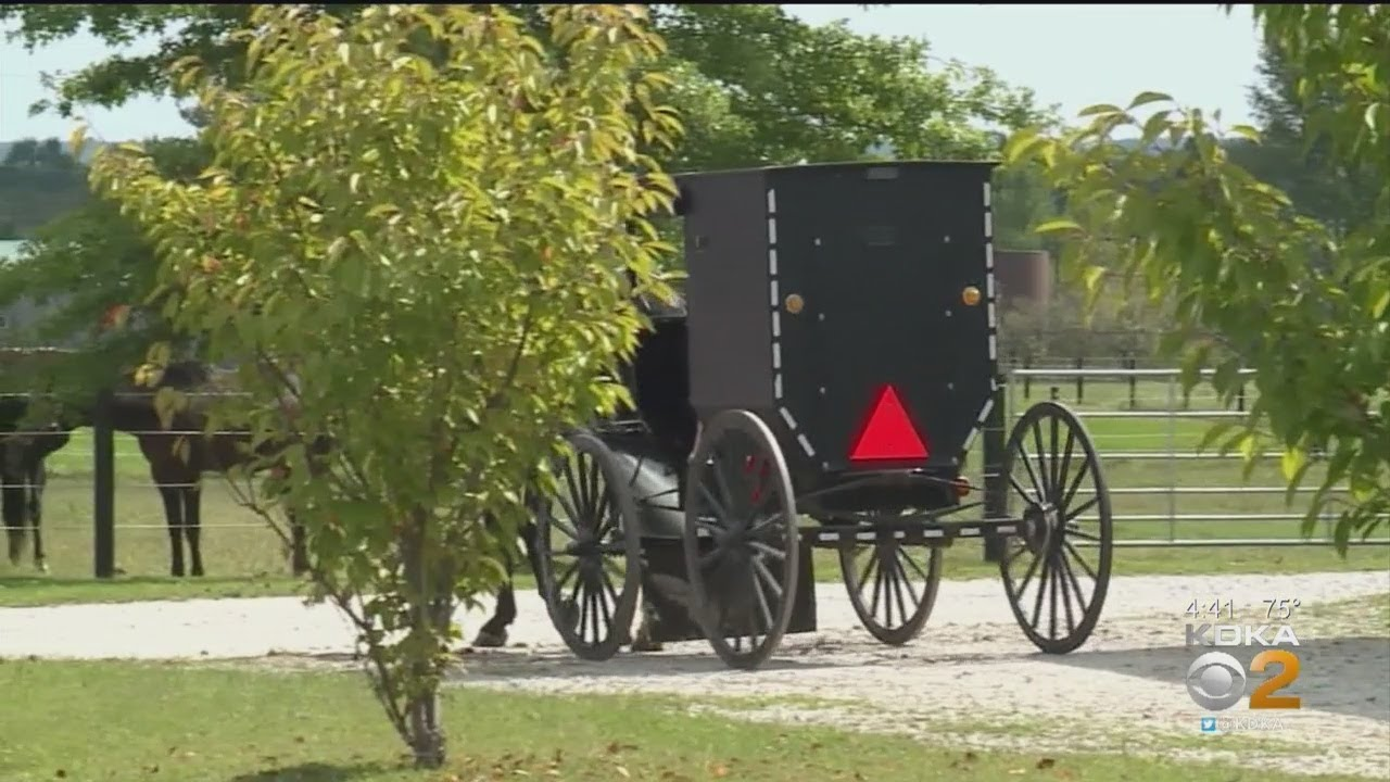 Two Amish Men Pulled Over For Drinking And Driving Their Horse And Buggy