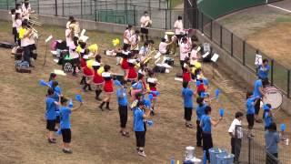 130717柏の葉公園野球場 幕張総合戦.