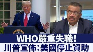 川普宣佈:美國停止資助世界衛生組織 新唐人亞太電視 20200415