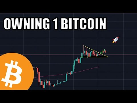 Owning 1 Bitcoin Is At An All Time High. The Future Is Bright.