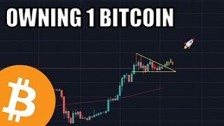 owning-1-bitcoin-is-at-an-all-time-high-the-future-is-bright