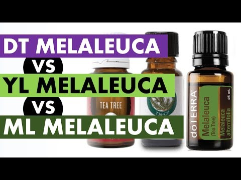 melaleuca-essential-oil:-doterra-vs-young-living-vs-melaleuca-company