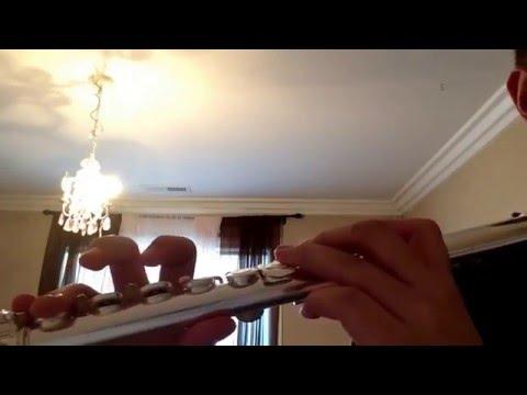 How to play: Eine Kleine Blockflötenmusik aka A little recorder music on flute