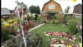 Оформление сада (57 фото): видео-инструкция как оформить своими руками, идеи, фото