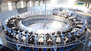 Dairymaster Swiftflo Rotary  // Strong where it matters!