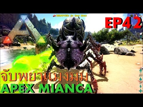 BGZ - ARK: Survival Evolved EP#42 จับนางพยาเเมงมุมApex Mianca