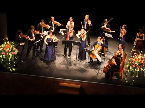 MENUHIN ACADEMY ORCHESTRA plays ELGAR: Introduction and Allegro