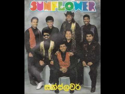 Sunflowers Hindi Janapriya gee  B