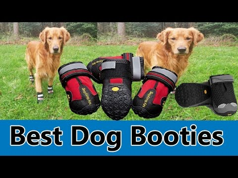 Best Dog Booties 2017 - Top 5 Best Dog Booties Review 804a015a372c