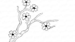 Как нарисовать цветущую сакуру: инструкция от EvriKak(Предлагаем нашу пошаговую инструкцию как нарисовать карандашом ветку сакуры в цветах. Фото-инструкция..., 2015-11-21T13:52:53.000Z)