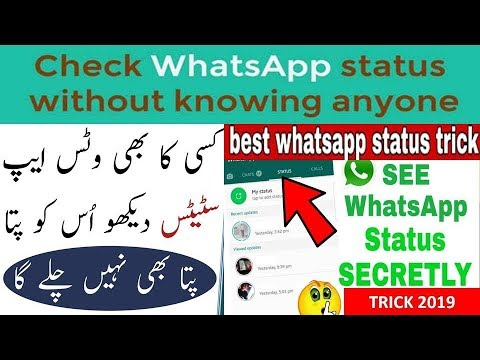 Check Whatsapp Status Without Seen Them Kisi Ka Bhi Status Dekh Lo Usy Pata Nahi Lagega