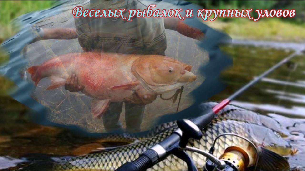 Шуточное поздравление с юбилеем рыбака 815
