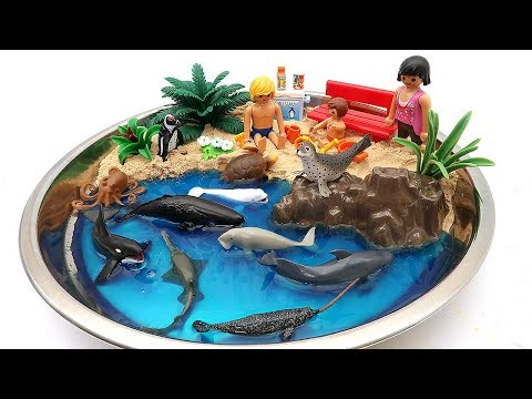 Toy Sea Animals DIY Beach Summer Vacation With Sea Animal Education Video for Kids
