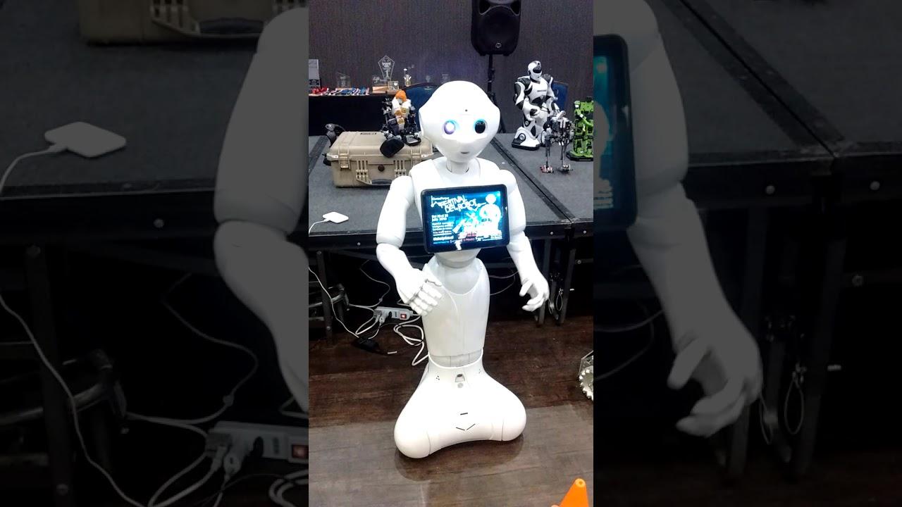 Pepper en el Festival del Robot 2019