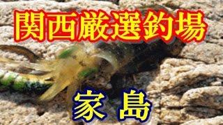 【釣り場情報】 関西の海釣り 家島 チヌ アオリイカ 磯釣りのメッカ! 海上釣堀 海水浴 マリンスポーツも楽しめる♪