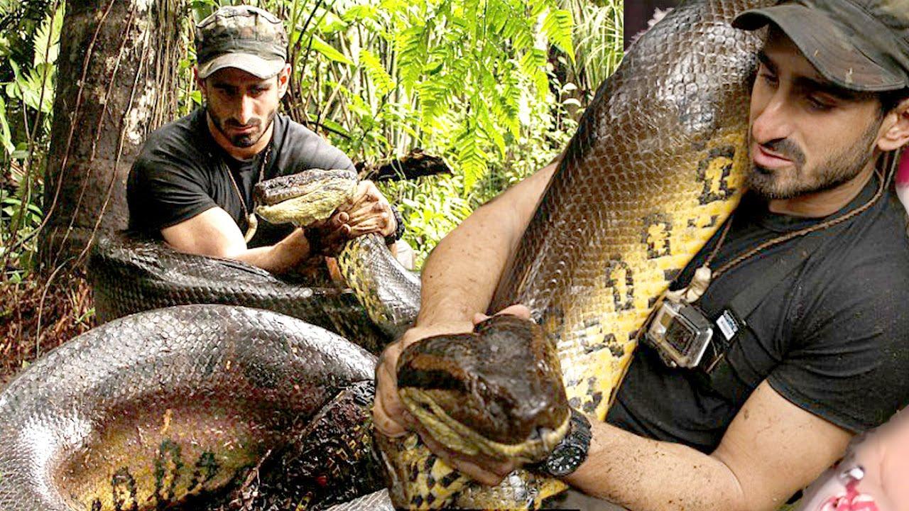 Man Eaten By Snake On TV - EPIC FAIL - YouTube