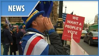 """""""Stop Brexit!"""" man gave up his job to stand outside parliament yelling"""
