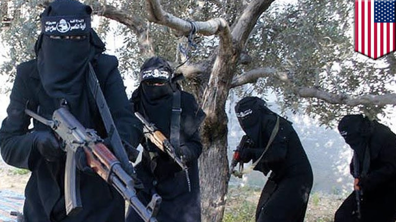 Image result for isis in america