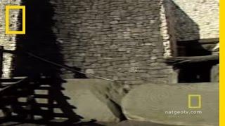 Tomb of Newgrange   National Geographic