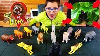 GORILLA IN FUGA! - LIONS & CO MAXXI EDITION - Leo Toys