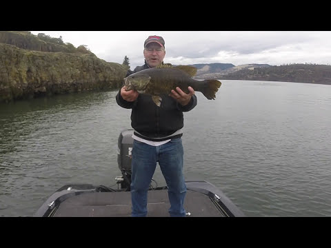 Giant Columbia River Smallmouth in the Fall