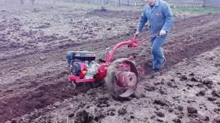 Вспашка огорода мотоблоком Беларус-09Н МТЗ ч5