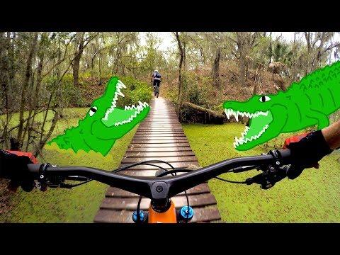 On The Hunt For Trail Gators | Mountain Biking Alafia State Park In Florida