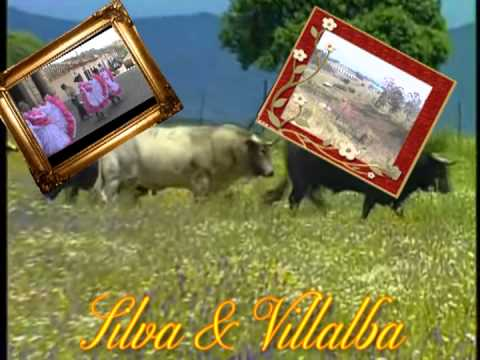 El Barcino - Silva y Villalba.mpg