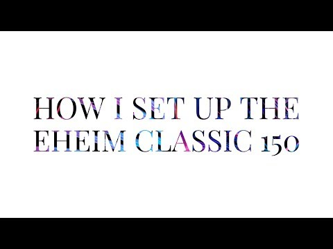 Eheim Classic 150 Set-up