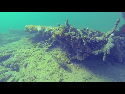 Pompano Beach Dropoff, Florida shore diving