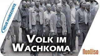 Volk im Wachkoma - Frank Rüdiger Halt