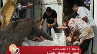 برنامج 90 دقيقة: كل المصريين أكلوا لحوماً فاسدة ونصفهم تناول لحم حمير!