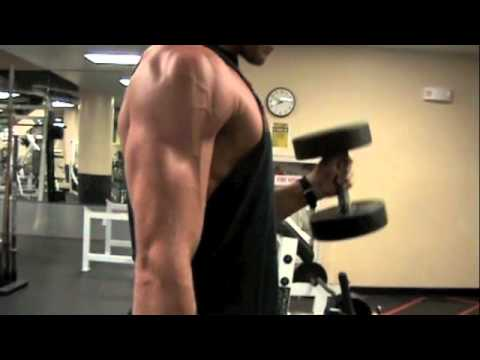 Biceps: Hammer Curls