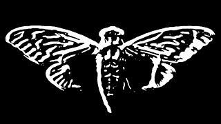 DCmp4   Cicada 3301 video