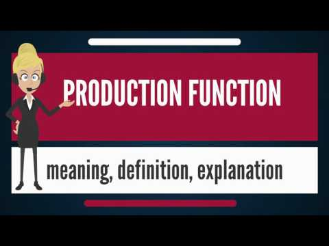 What is PRODUCTION FUNCTION? What does PRODUCTION FUNCTION mean? PRODUCTION FUNCTION meaning