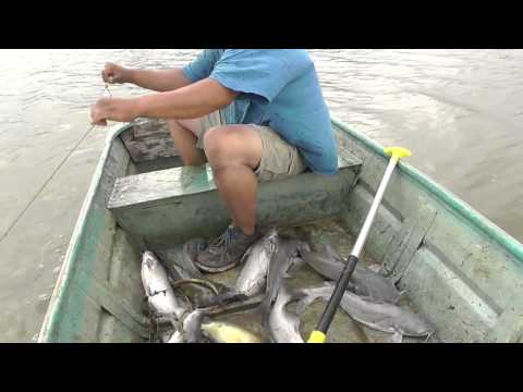 Show #10 Jug Noodle Fishing from YouTube · High Definition · Duration:  28 minutes 31 seconds  · 19,000+ views · uploaded on 6/7/2014 · uploaded by Cast and Call Outdoors