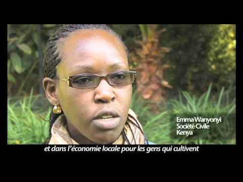 Le tabagisme en Afrique : l'Afrique et l'industrie du tabac