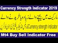 Currency Strength Indicator for Forex Trading - YouTube